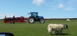 Tractor load of visitors